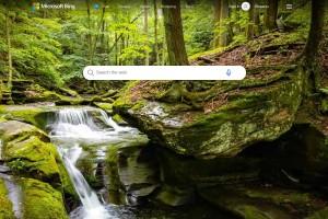 bing.com Resim SEO İçerik Raporu