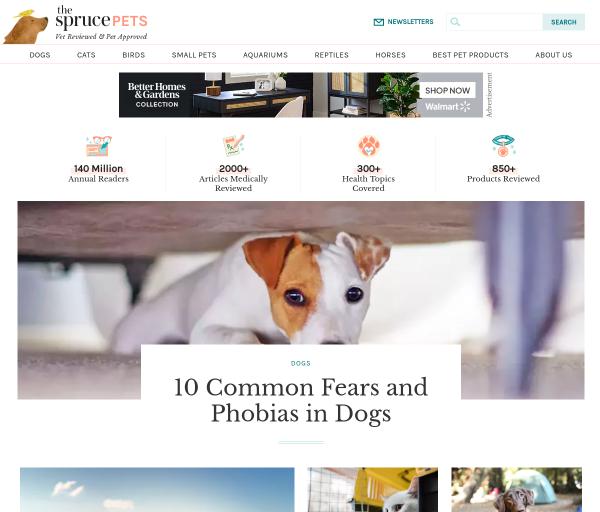 thesprucepets.com SEO Raporu
