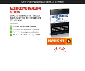 Need A Quick Reference Guide On FB Marketing???
