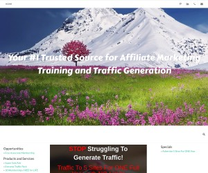 [ Traffic To 5 Sites For ONE Full Year with NO Limits ] Promote Affiliate Links - Change ANYTIME ($3