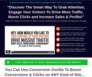 Looking For More Traffic, More Clicks And Bigger Profits? Here's The Solution You Need...