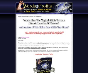Introducing 'Words to Profits'