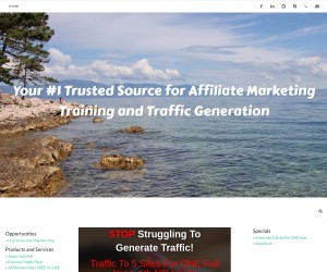 The #1 Name In Affiliate Program Promotion Systems Need Traffic, Leads, Income?