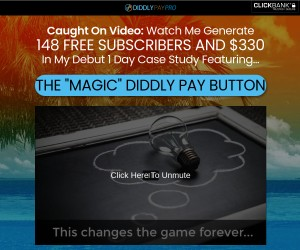 Diddly Pay Button