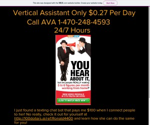 Vertical Assistant Only $0.27 Per Day