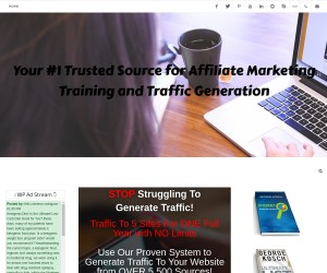 [ Run Your 5 Solo Ads For ONE Full Year ] Promote Affiliate Links - ($47 ONE Time Cost)