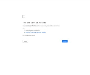 Free Online Training & Done For You System