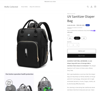Sterilizer Backpack