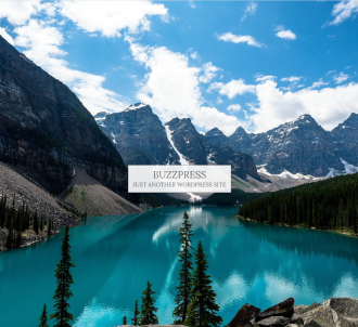 Buzzpress - Fully Monetized Buzzsite Builder