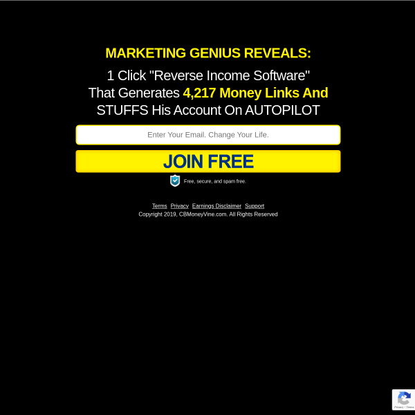 The PERFECT Online Income System