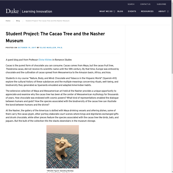 Student Project: The Cacao Tree and the Nasher Museum - Duke Learning Innovation
