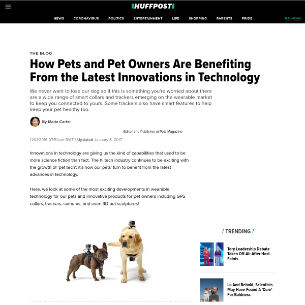 How Pets and Pet Owners Are Benefiting From the Latest Innovations in Technology