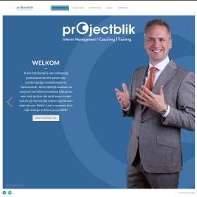 Organisatieadviesbureaus Projektblik