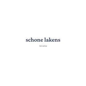Organisatieadviesbureaus Schuette & Company