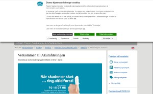 Hjemmeside