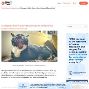 Mundgeruch bei Katzen: Ursachen und Behandlung - Happy Tabby