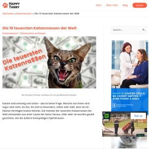Die 10 teuersten Katzenrassen der Welt - Happy Tabby