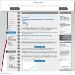 FSnD Ranking und Promoting, Suchmaschinenopimierung, Softwareentwicklung