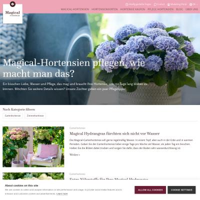 Pflege Hortensien